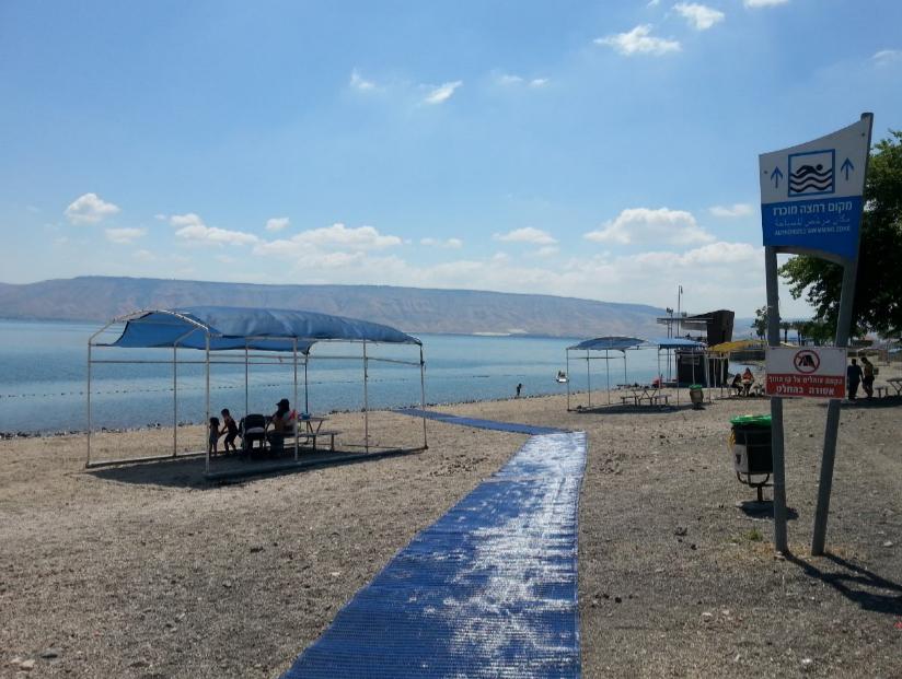 חוף שקמים