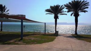 חוף-חלוקים