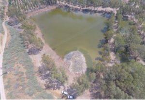 שיקום ביצות כינרת