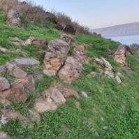 שרידים מאפיינים שנותרו בשטח מאמת המים הקדומה לטבריה, בולטת לעין קריסה של התעלה הבנויה במדרונות המזרחיים (נתונים ומיפוי ח' ממליה)