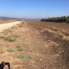 הקמת מע' תעלות ניקוז בדרך החקלאית המחברת את היישובים שרונה-שדה אילן